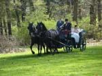 Svatba na zámku Loučeň, ženich si veze nevěstu