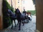 Svatba na zámku Mělník