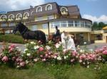 Svatba v hotelu Galatea, Kosmonosy