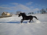 Zimní radovánky, volný čas