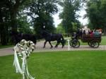 Svatební čtyřspřeží na zámku Mcely (2014)