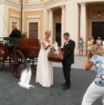 Svatba s holuby, Liblice