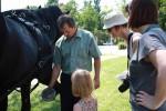 Poučení o tom, jak se kove kůň - pro zvědavé návštěvníky :-)